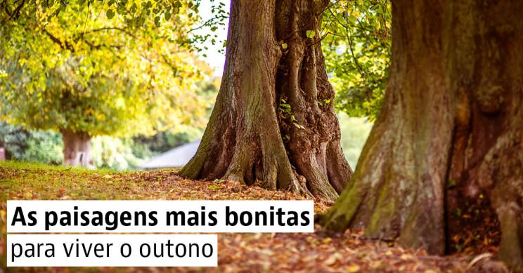 Cinco parques naturais que tens de visitar em Portugal