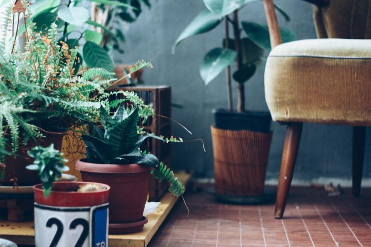 Como ter uma varanda ou terraço de sonho: 6 dicas de decoração imperdíveis