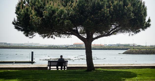 """Portugal é """"Melhor Destino Turístico"""" para pessoas com dificuldades de mobilidade"""